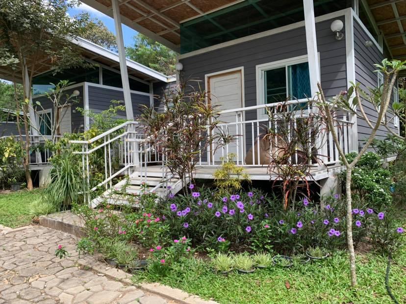 สวนดอกไม้หน้าบ้านพัก - ฟาร์ม แอนด์ สเตย์ บาย ไร่สนสีแสด